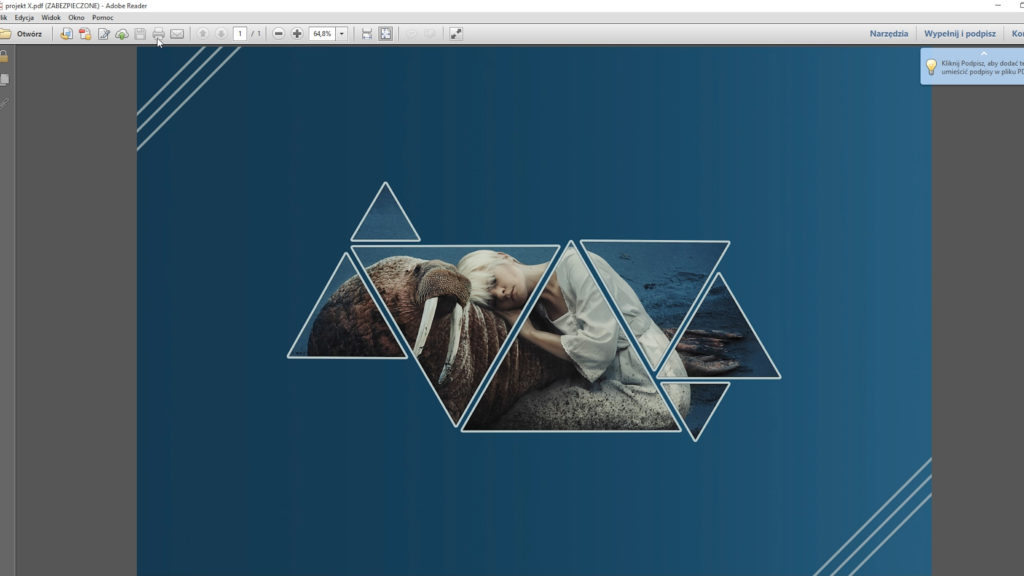 pdf zabezpieczony hasłem - sztuka retuszu